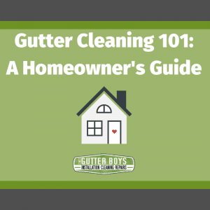 Gutter Cleaning 101: A Homeowner's Guide