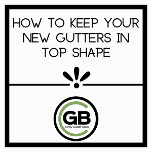How to Keep Your New Gutters in Top Shape