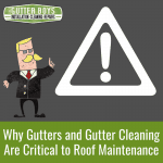 Why Gutters and Gutter Cleaning Are Critical to Roof Maintenance